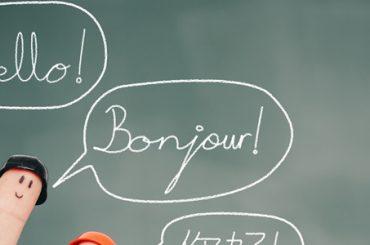 Avrupa Dil Portfolyosu